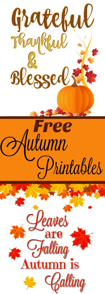 Get ready for Fall with these free lovely Autumn printables that will look very cute framed.