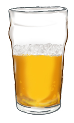 BEER (Half Full Pint)WEB