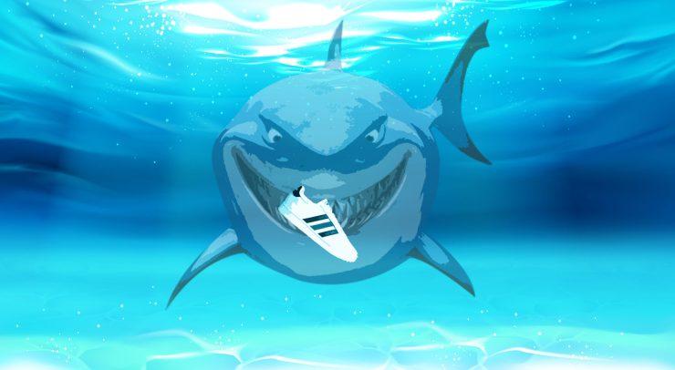 The canal shark
