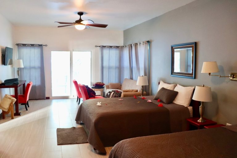 Parrot Cove Room