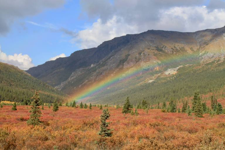 Rainbow touching red undergrowth and pine trees in front of mountains