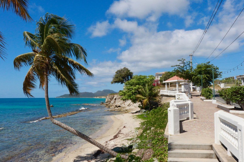 The end of the malecon in Vieques, with palm trees, azure water, and white concrete railing