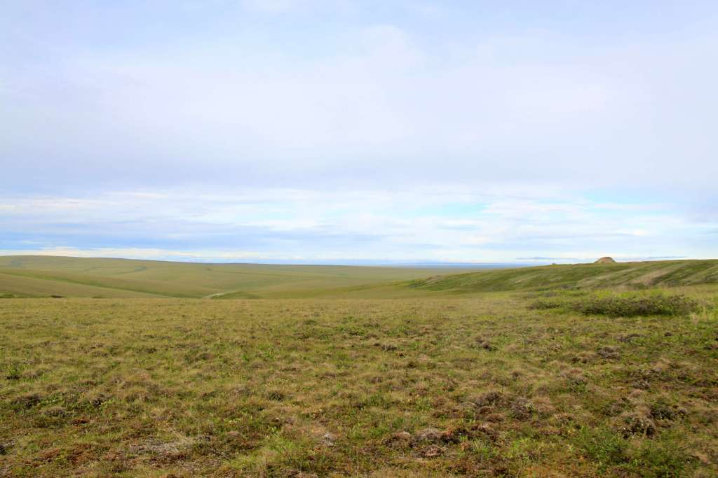 Rolling tundra on the North Slope as seen from the Dalton Highway, Alaska