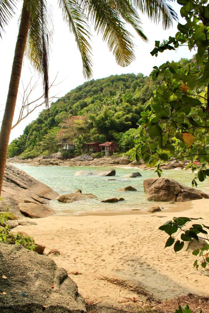A perfect, secluded Thailand beach with clear water and palm trees.