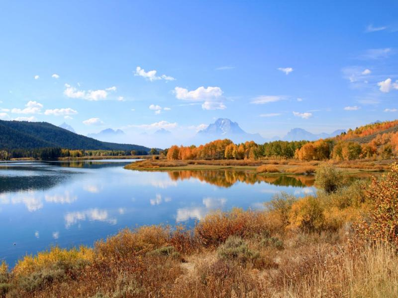 Fall brilliance at Oxbow Bend south of Yellowstone National Park