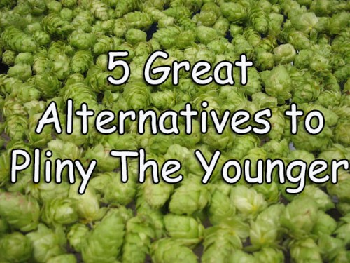 5 Great Alternatives to Pliny The Younger