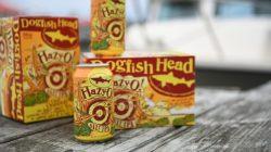 Dogfish Head Hazy O