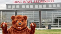 Dust Bowl's Barley the California Golden Ale Bear