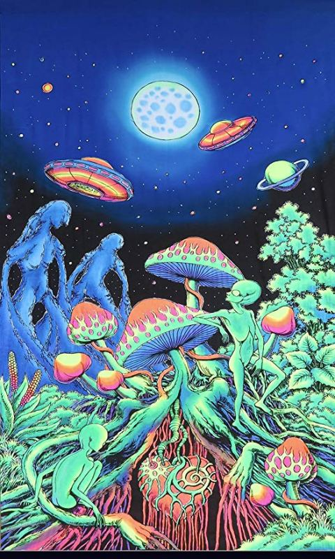 how to prepare for magic mushrooms, 10 Tips on How to Prepare for Magic Mushrooms in 2020, The Fun Guys