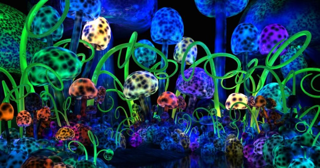 "About Psilocybin and Psilocin AKA ""Magic Mushrooms"" 15"