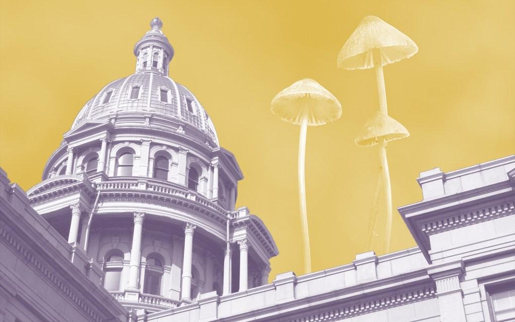 Denver First to Decriminalize Magic Mushrooms 4