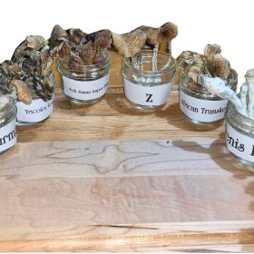 8 Strains Magic Mushroom Party Pack