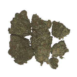 Lemon Kush $99 Oz Special