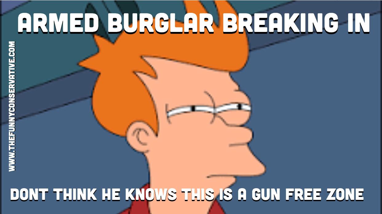 Fry Burglar