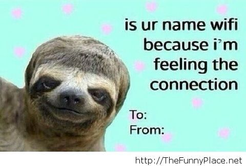 Funny Sloth Pick Up Line – TheFunnyPlace