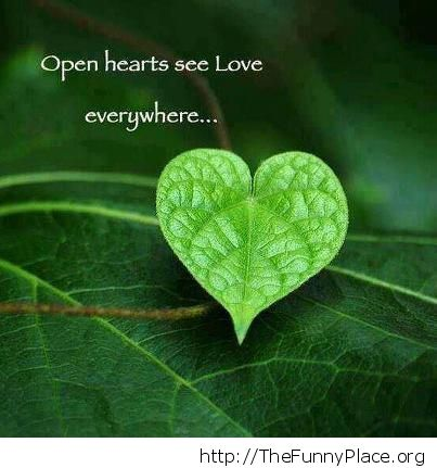 Wallpapers Of Love Quotes With Pictures Love Is In The Air Thefunnyplace
