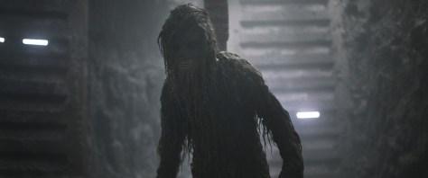 chewbacca-db-history-muddy-chewie_25c95e6a