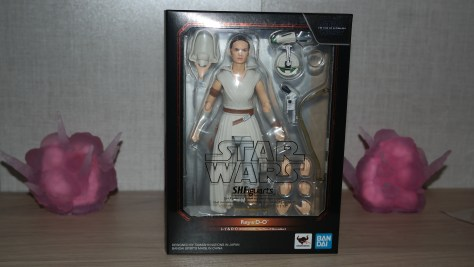 S.H. Figuarts Review - Rey & D-O (Star Wars The Rise Of Skywalker)