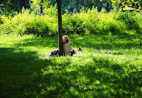 student under a tree thinking about what to do the summer before their dietetic internship