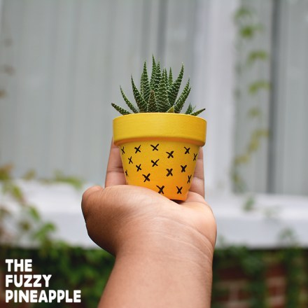 Pineapple Doodle Pot X by The Fuzzy PIineapple