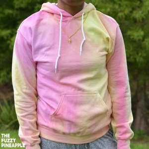 Color Wheel Hoodie in Pink Lemonade