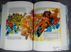 MotU mini-comic collection (18)
