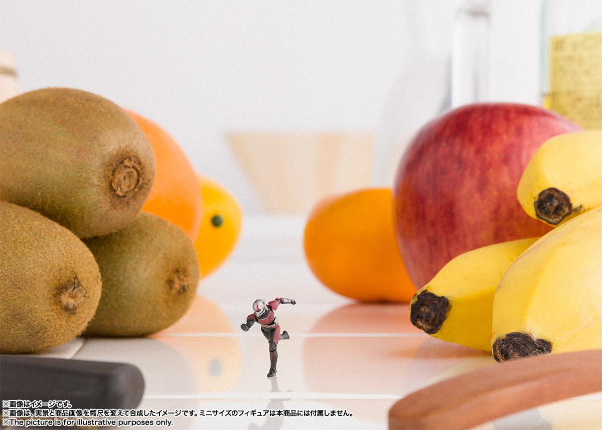 Bandai Tamashii Nations SH Figuarts Avengers Endgame Ant-Man promo 09