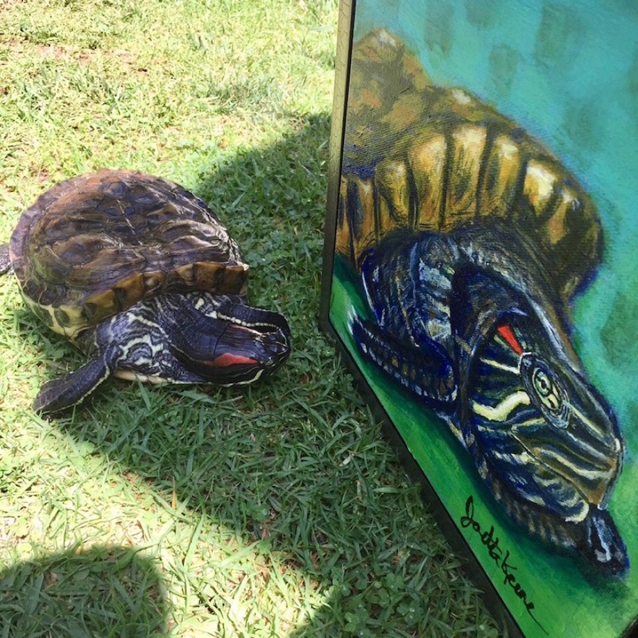 Peter the turtle poses on the grass next to a painting of him.