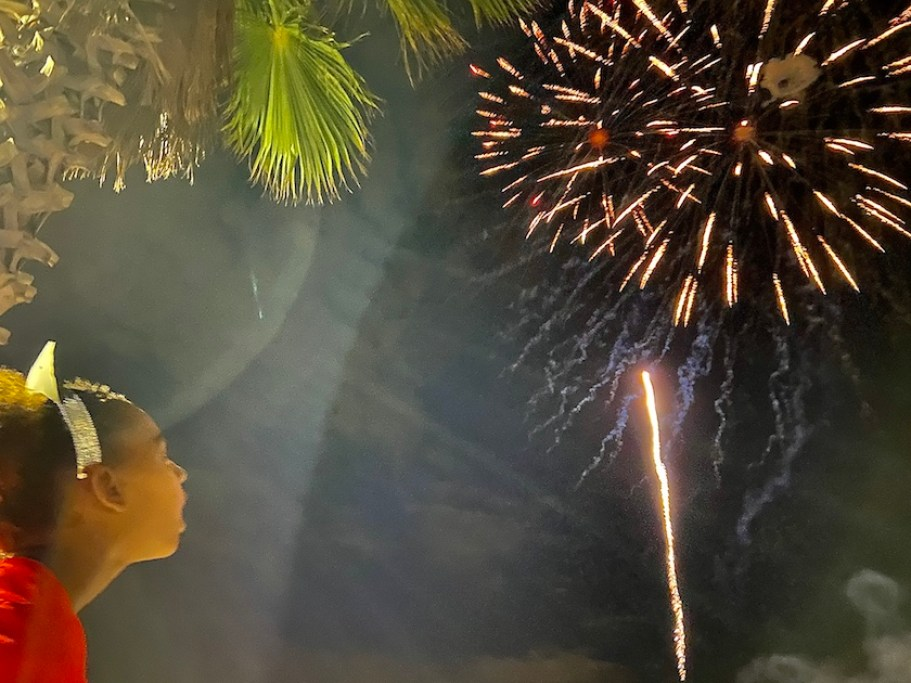 A child looking at fireworks in a night sky