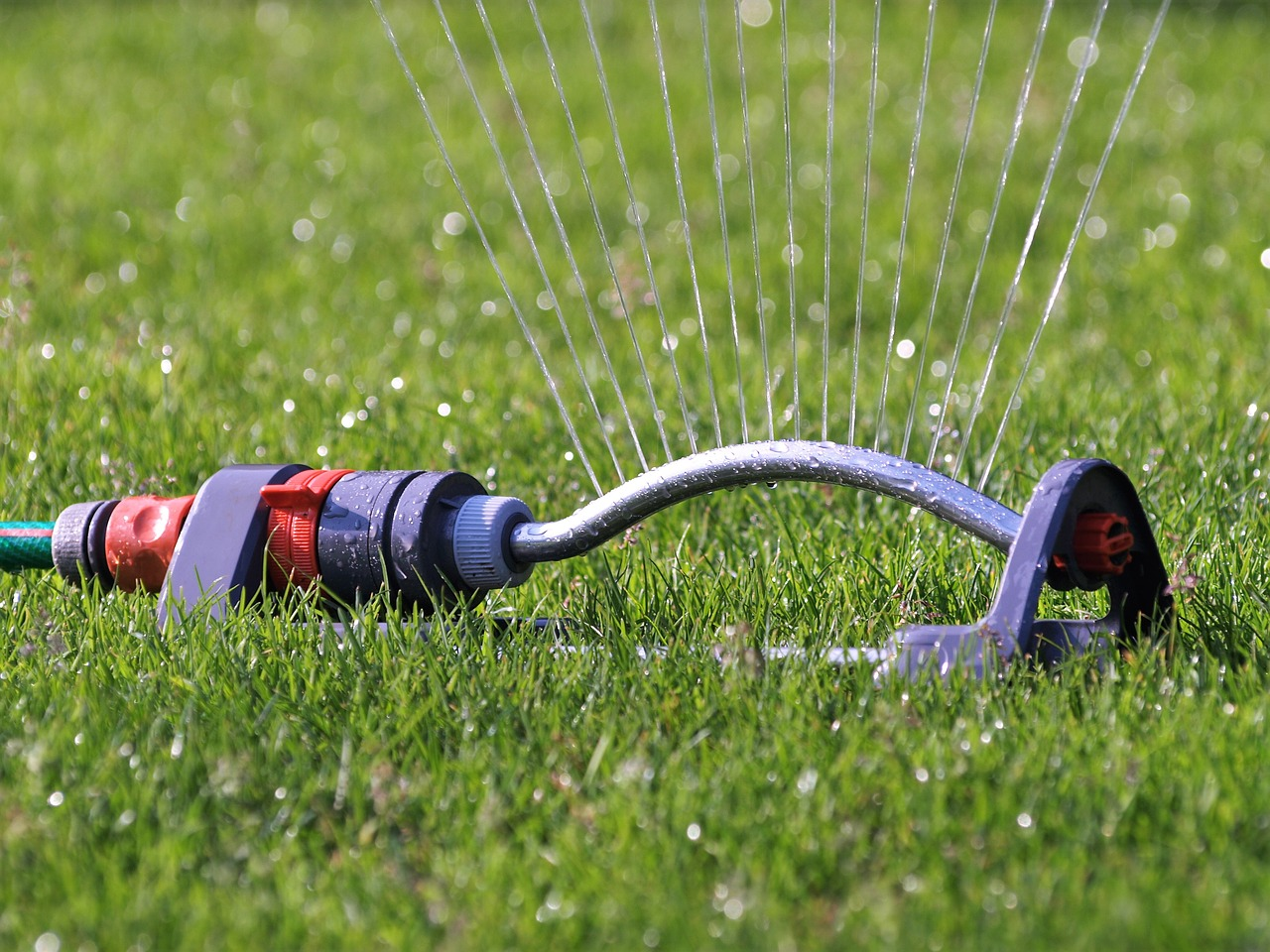 A close up photo of a rotating sprinkler on the grass.