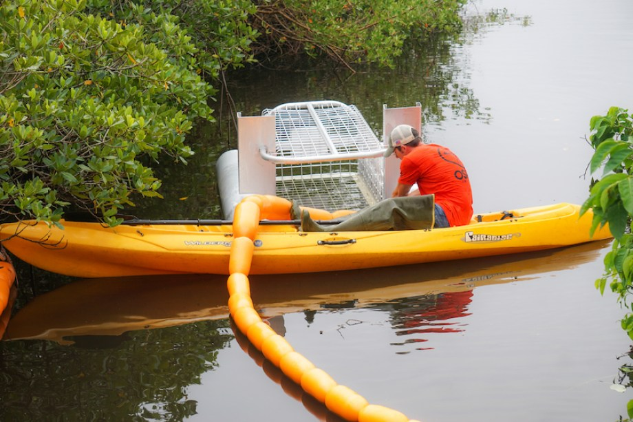A man in a yellow kayak in the mangroves installing a cage device for litter collection.
