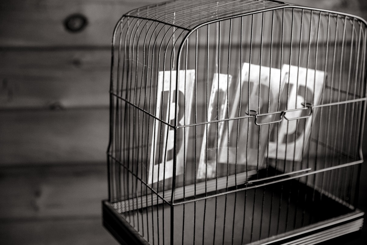 "Metal birdcage with the words ""Bird"""