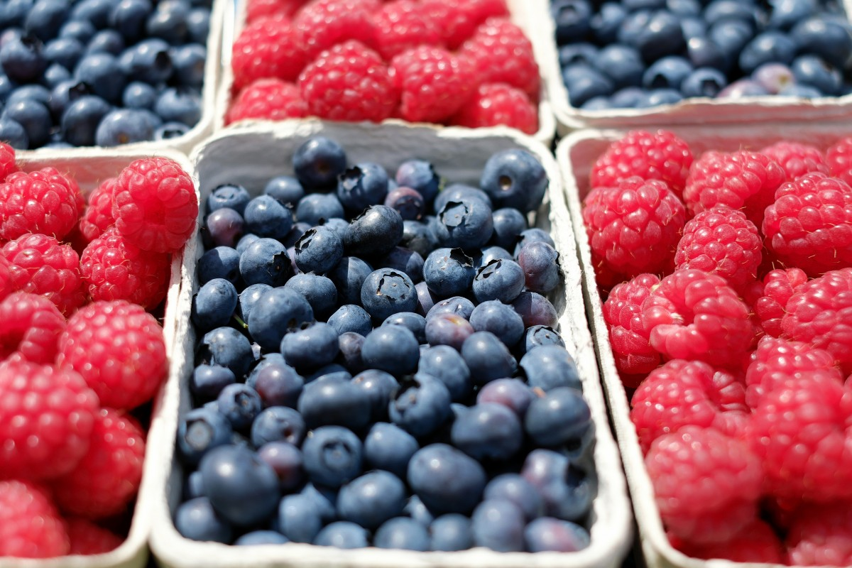 Red and blue berries in baskets
