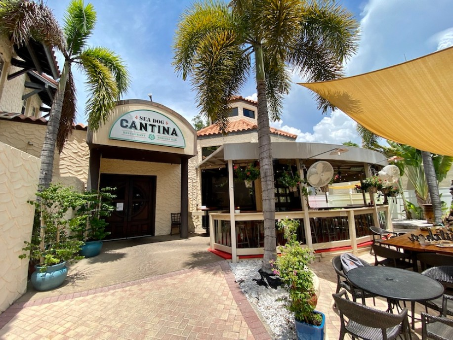 """A photo of the outside of a restaurant with a bay window area and palm trees with a sign that reads """"Sea Dogs Cantina"""""""