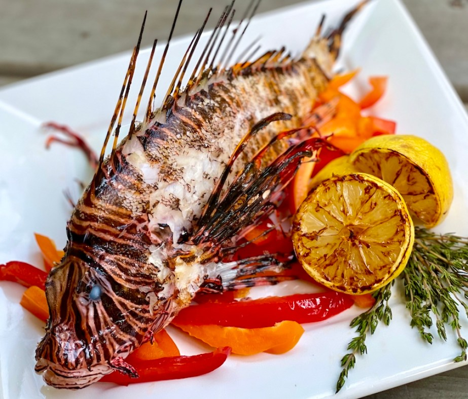 A photo of a grilled lion fish with spines in a bed of red peppers with grilled lemon garnish.