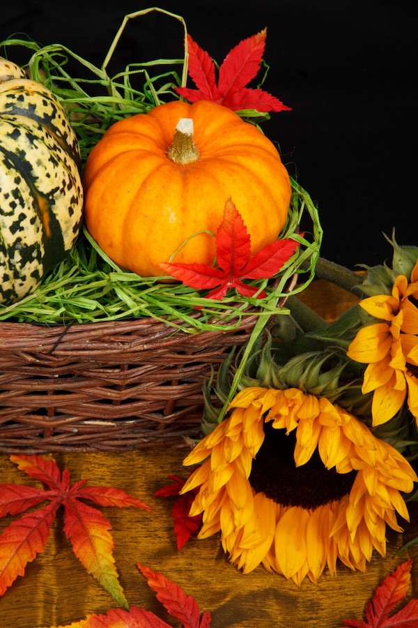 A pumpkin in a brown wicker basket with dried flowers and a wilting sunflower.