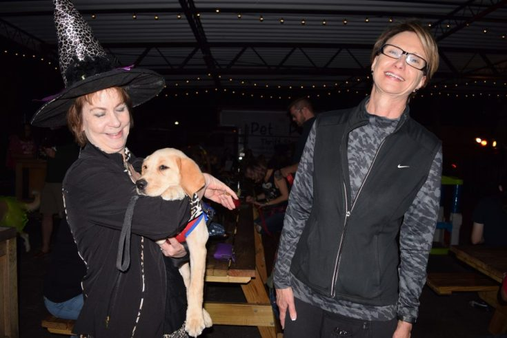 """Linda Allen, right, of Seminole, laughs as her friend Tricia Nuckols holds a 3-month-old golden retriever in training by the Southeastern Guide Dogs during the sixth annual Party for the Paws Saturday, October 22, at Cage Brewing Co. in St. Petersburg. The event, which celebrated Halloween and the fall season, was a fundraiser for the Pet Pal Animal Shelter and included a doggie costume contest, raffles, food, drink, vendors and activities for kids. The laid-back dog, simply called Puppy since she hadn't been formally named yet, was wearing a costume. """"She's Wonder Woman or Super Girl, I'm not sure which,"""" said Allen, a Southeastern Guide Dogs volunteer."""
