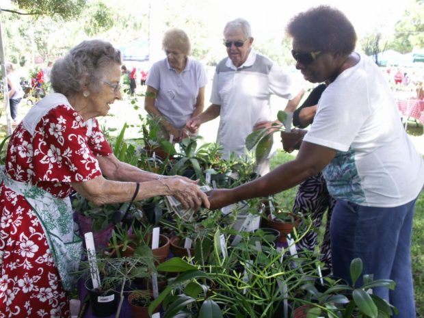 """Dahleen Bache of St. Pete Beach makes change for customers buying plants Friday, October 9 at the sale while other visitors browse. """"We work very hard,"""" said Bache, who has been a garden club member for more than 25 years."""
