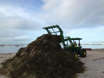 Ever wonder what's at the end of a rainbow? Apparently it's the Gulfport Parks Department. On Wednesday June 8, the city's Sam Anany cleans up debris left on Gulfport Beach by Tropical Storm Colin Monday and Tuesday. Photo courtesy of the city of Gulfport.
