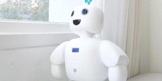 Circulus PiBo Companion Robot