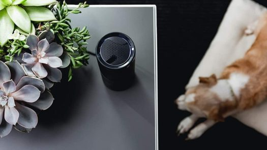 The best air purifiers of 2021 for your home » Gadget Flow 5