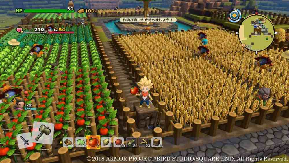 ⋆ Dragon Quest Builders two - A Initial Time Builder's