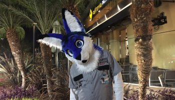 Do You Know Why Furry Fursuits Are A Fun Way To Cosplay