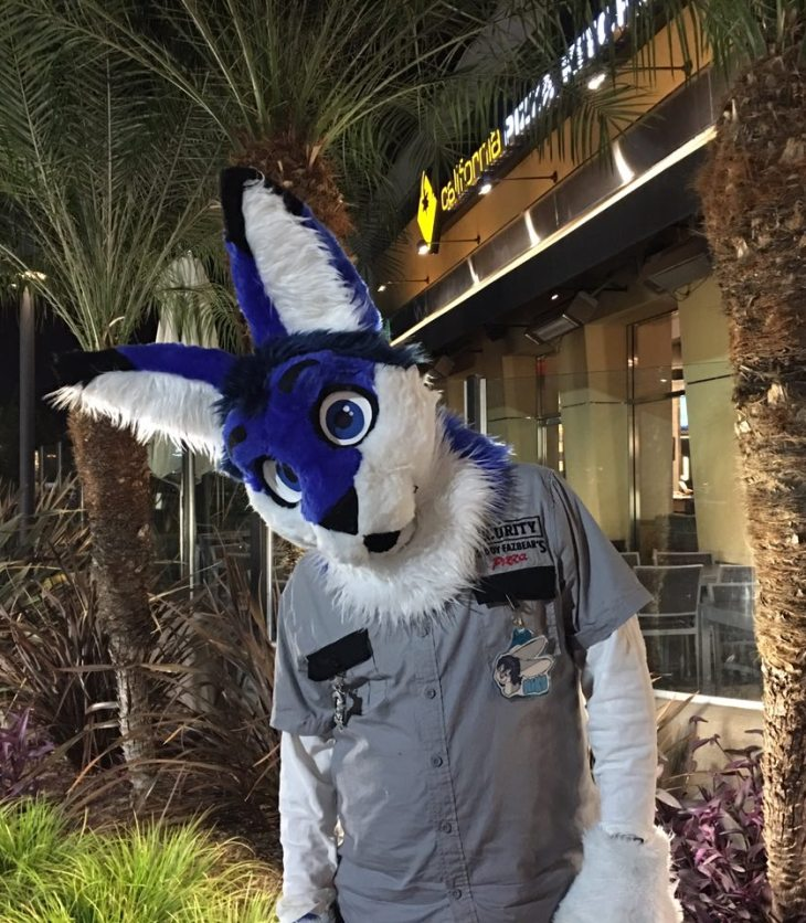 Niko Linni Partial Fursuit Out at A Southern California Mall At Night