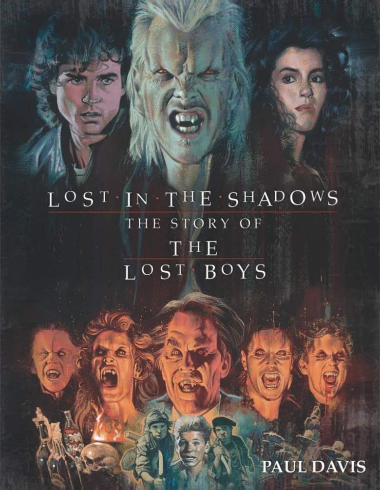 Lost in the shadows book