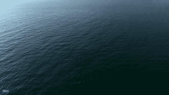 Screenshot 2017-10-06 at 8.27.36 PM