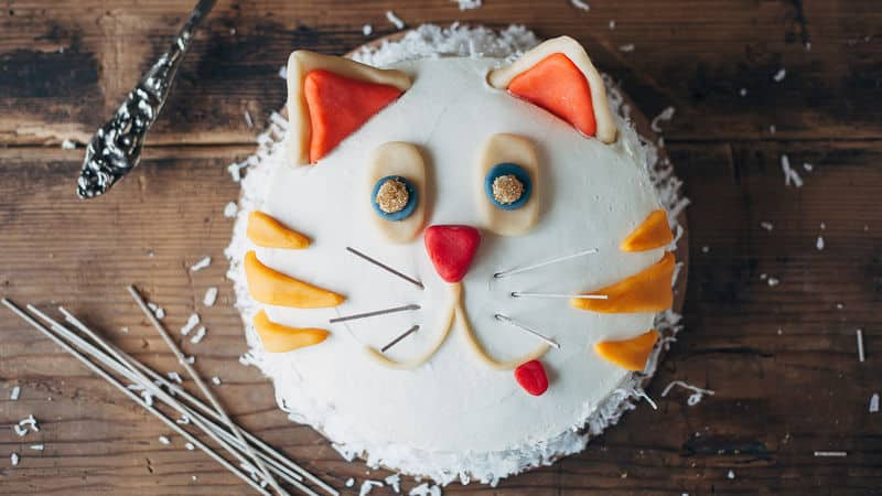 TGON-BAKES-CATS-CAT-CAKE