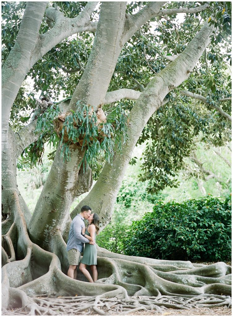 Emily & Dan A Proposal At Marie Selby Botanical Gardens