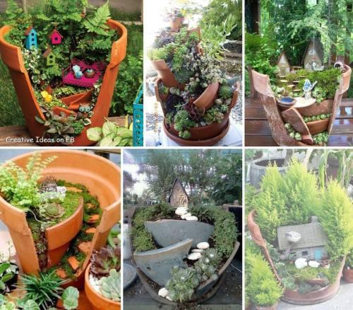 Broken pot gardens