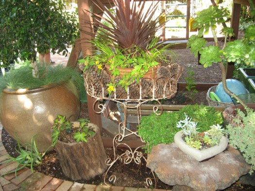 A collection of plant stands and containers